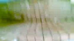 sureshia hanumangarh kaand