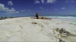 Russian nudist girl vacation