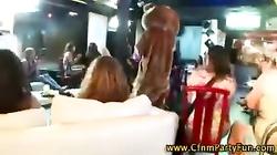 Group of girls flashing stripper